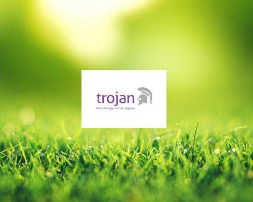 Graszaden Trojan